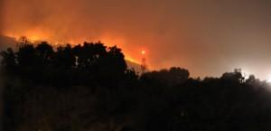 Incendios en los bosques
